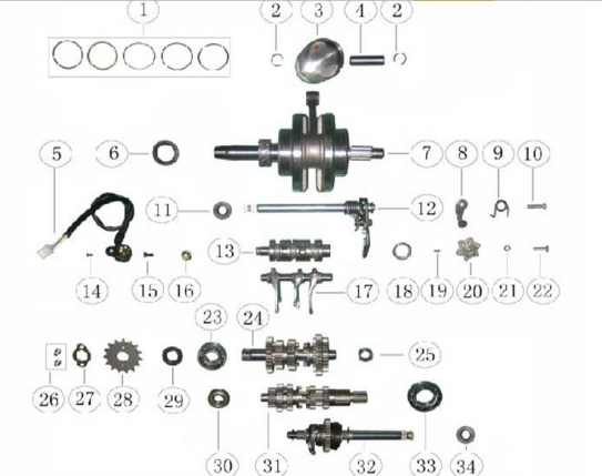 Atv Engine Diagram - Wiring Diagram Data on
