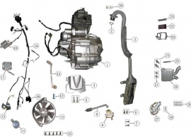 ATV engine accessories diagram. CG type.