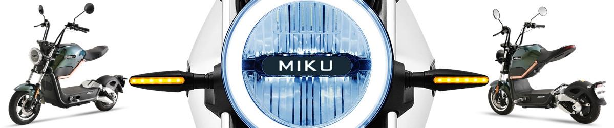 Miku800