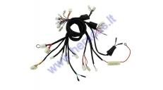 Wiring assembly (wire harness) for scooter GY6 50cc 10inch