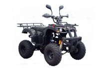 Quad bike WARRIOR SUPER EDITION 250cc