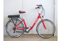 Electric bicycle ELECTRON  EB21. Aluminium frame, Lithium-ion batteries.