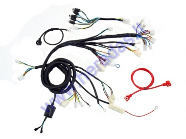 Wiring assembly (wire harness) for scooter GY6 50cc 12inch