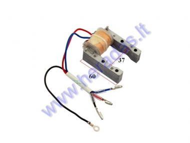 Magneto/stator for motorized bicycle