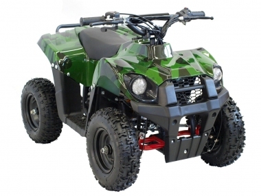 Electric quad bike Tiger 1000WAT