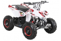 Electric quad bike FOX XTR 1000WAT