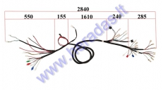 WIRING ASSEMBLY (WIRE HARNESS) FOR Elektric trike mobility scooter MS03
