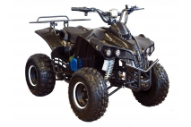 ELECTRIC QUAD BIKE 1000WAT WARRIOR (PLEASE CONTACT FOR THE SENDING TERMS AND PRICE: PARDUOTUVE@HERADAS.LT)