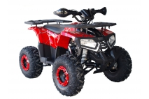 QUAD BIKE 125cc TREX 8c (PLEASE CONTACT FOR THE SENDING TERMS AND PRICE: PARDUOTUVE@HERADAS.LT)