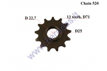 FRONT SPROCKET 13 TEETH, 520 CHAIN